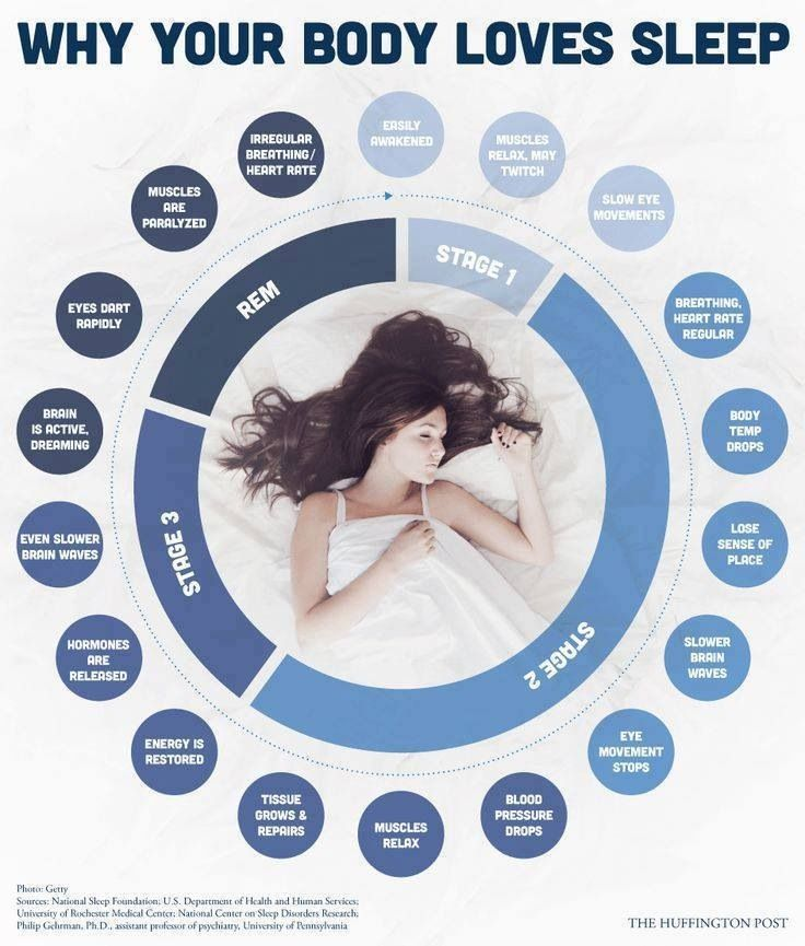 Important sleep cycles