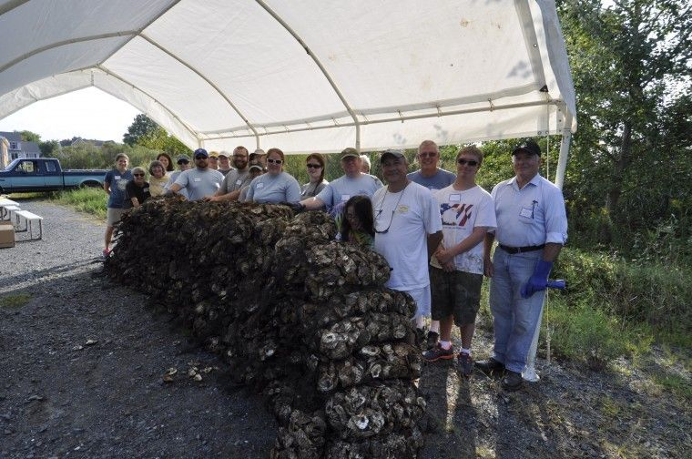 Volunteers encourage oyster recovery - Real Estate - Star