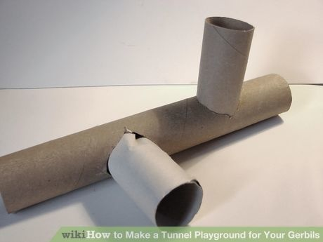 Image titled Make a Tunnel Playground for Your Gerbils Step 3Bullet2