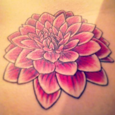 dahlia flower tattoo tattoo inspiration pinterest dahlia rh pinterest ca dahlia flower tattoo designs purple dahlia flower tattoo