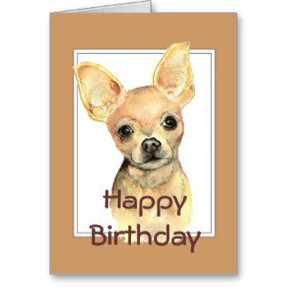 Funny Happy Birthday Chihuahua Chihuahua Birthday Cards More