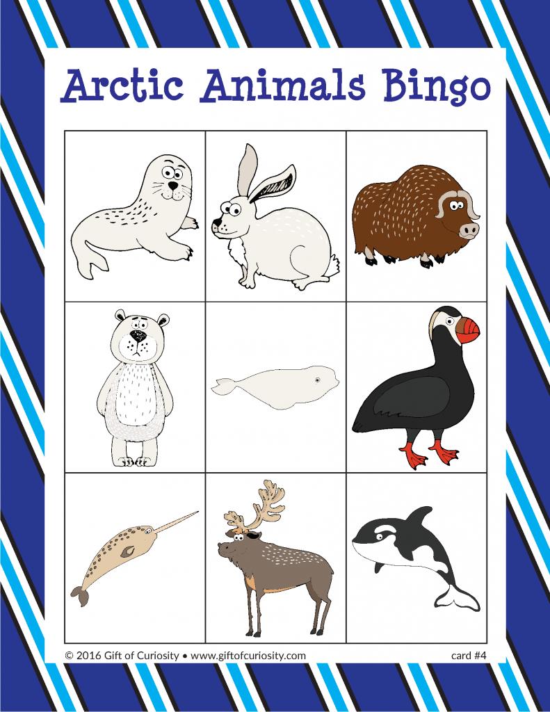 Arctic Animals Bingo Arctic animals, Arctic, Animals