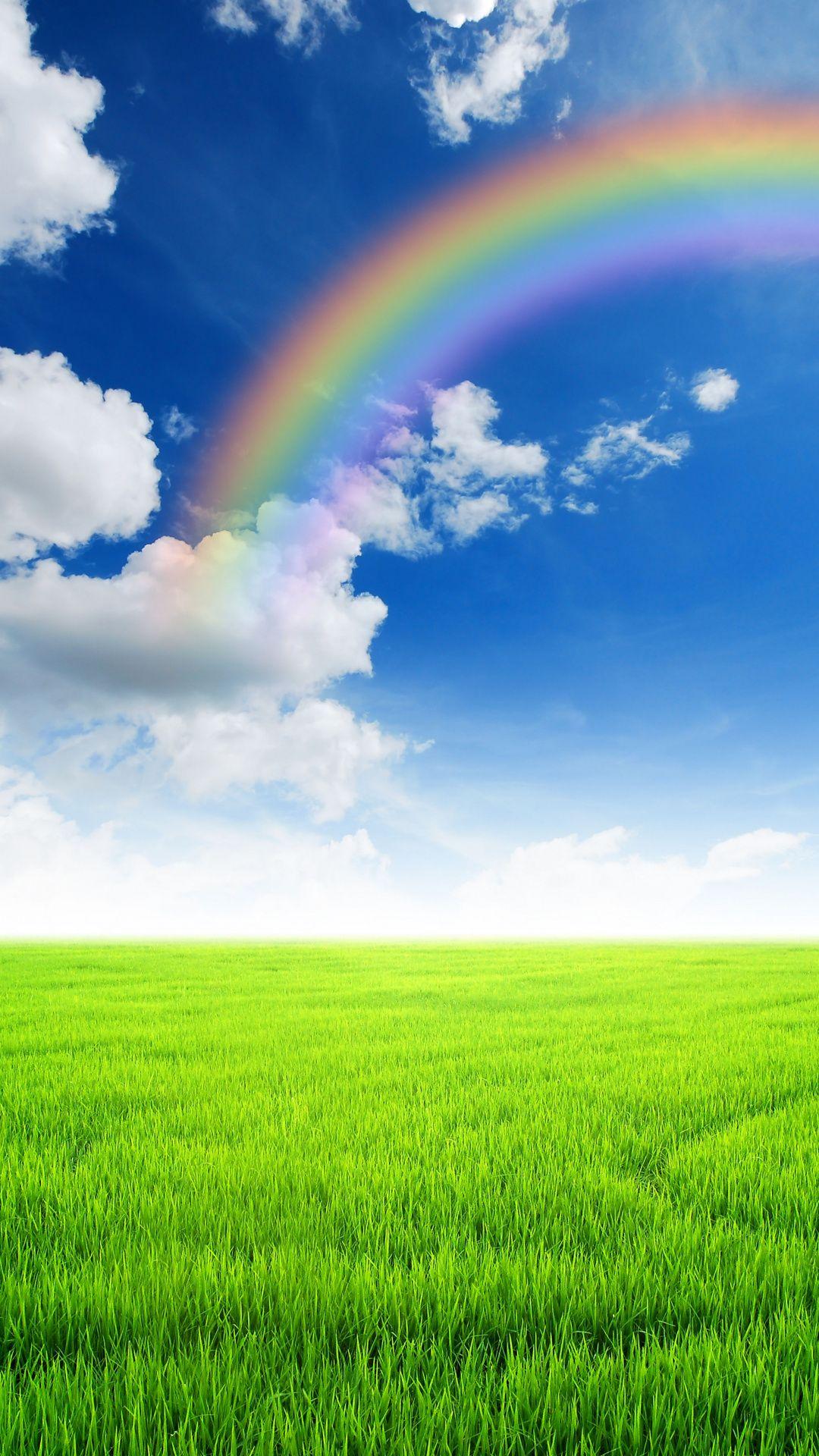 Wallpapers Sky Wall Rainbow Grasses Grazing Sky Rainbow Sky Nature Backgrounds Wallpaper grass field rainbow hill fog