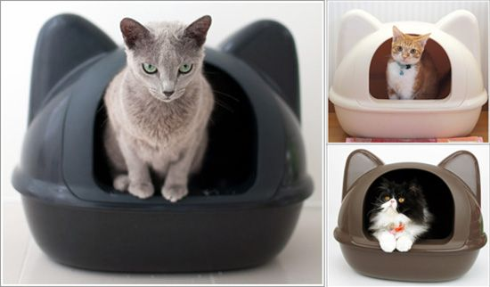 Icat Litter Box Hauspanther Litter Box Automatic Cat Litter Crazy Cat People