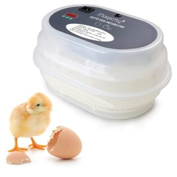 Automatic Incubator Mini Egg Incubator Duck Bird Egg Small Poultry Incubator Digital Chicken Breeding Box