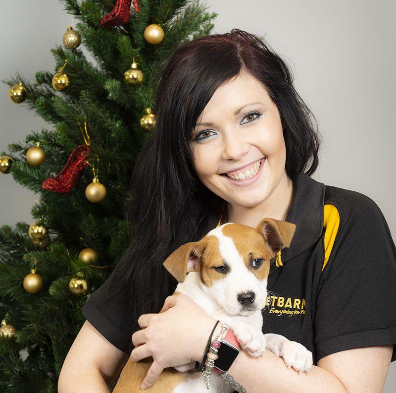 Petbarn Foundation Tree Of Hope Appeal Raised Over 1 000 000 Australian Dog Lover Appealing Lovely Creatures Australian Animals