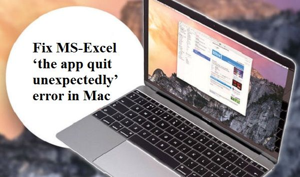 Looking for the solution to fix #MS-Excel \u0027the app quit unexpectedly