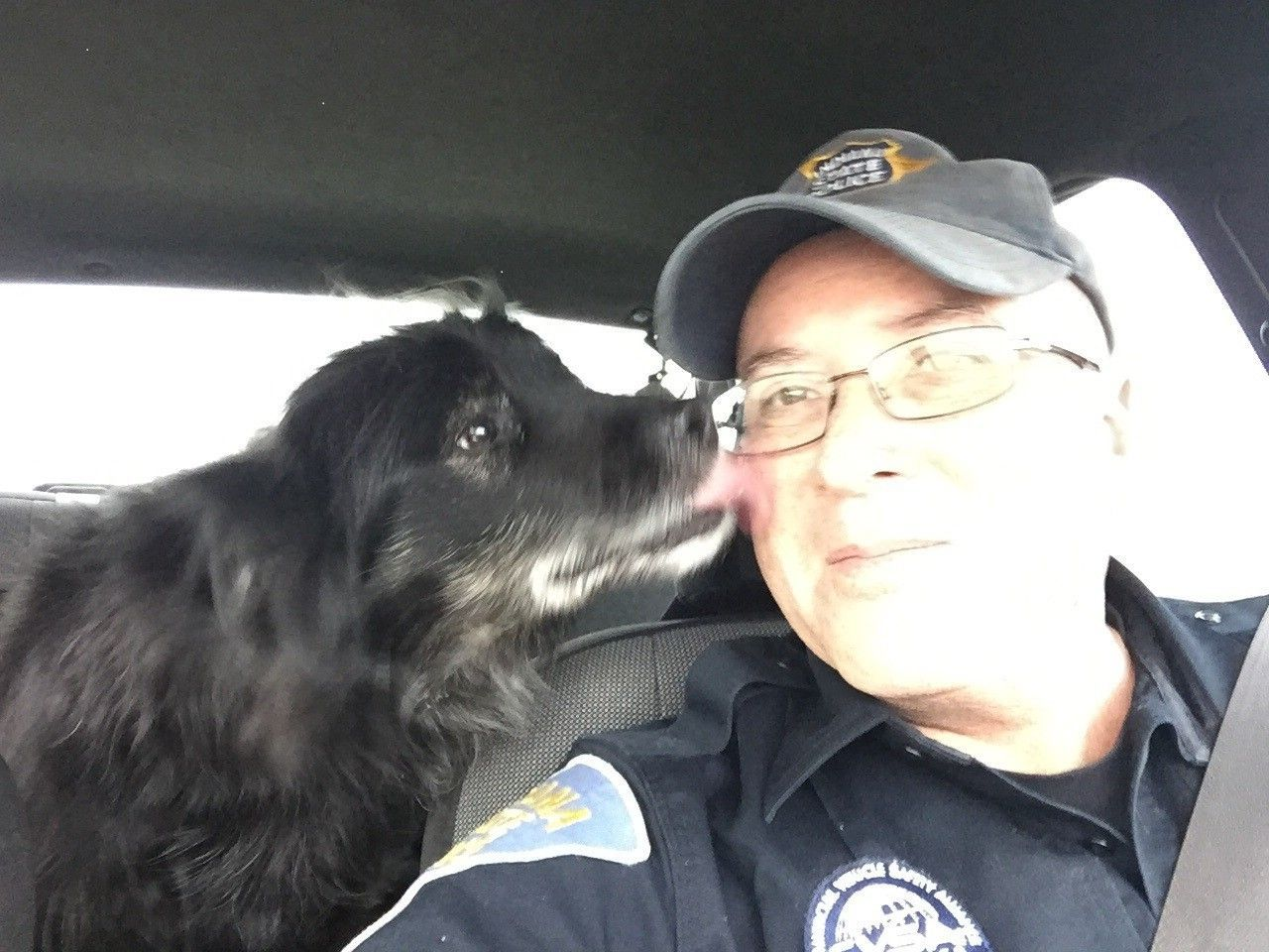 Trooper rescues escaped dog from busy highway rescue
