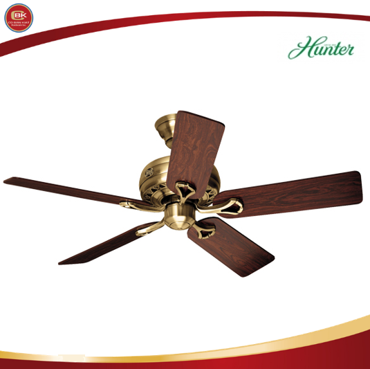 Hunter Savoy Series Features A Whisperwind Motor That Delivers Ultra Powerful Air Movement With Whisper Quiet Performance So Yo Electric Fan Philippines Hunter