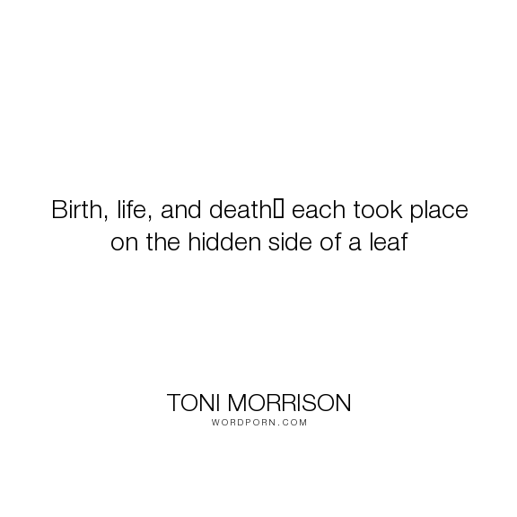 "Toni Morrison - ""Birth, life, and death? each took place on the hidden side of a leaf"". inspiration"