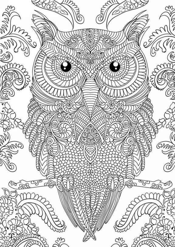 Adult Coloring Book 30 Owl Designs And Paisley Patterns For