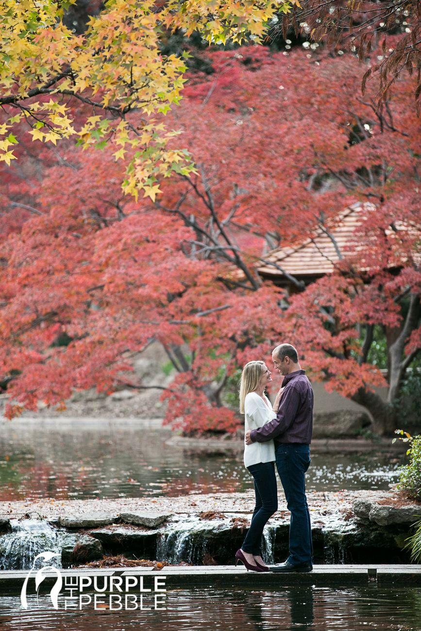 Fort Worth Japanese Gardens The Purple Pebble Photography Japanese Garden Engagement Session Japanese Garde Fall Engagement Japanese Garden Autumn Garden