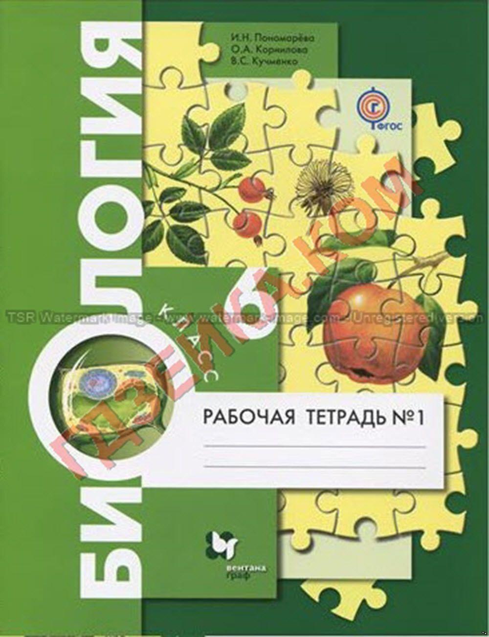 Готовые домашние задания по русскаму языку авторы н.г.гольцова и и.в.шамшин