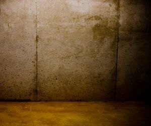 How To Remove Mold From Cement Walls And Floors