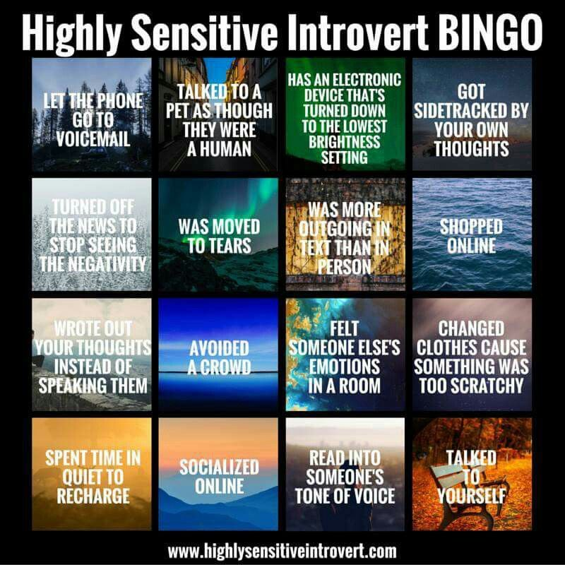 Image result for highly introverted bingo
