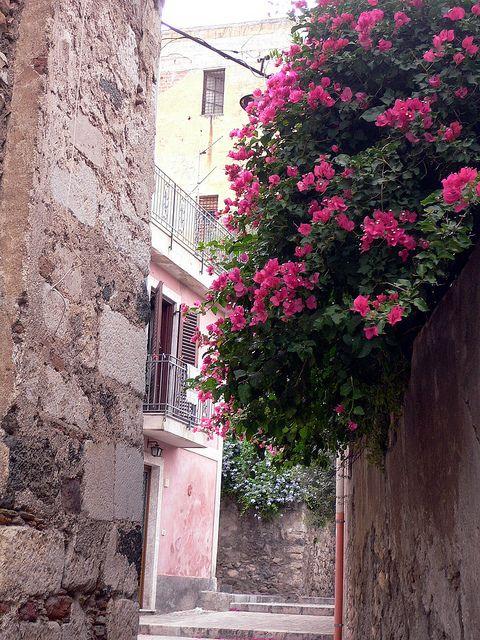 Taormina - Bouganvillea on the old wall