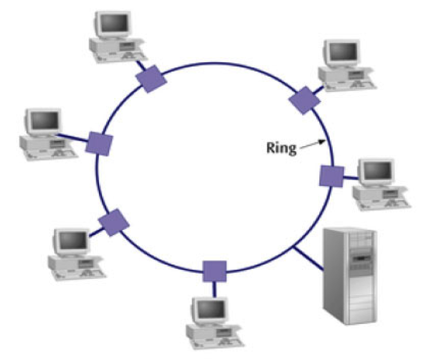 What Is Fiber Ring