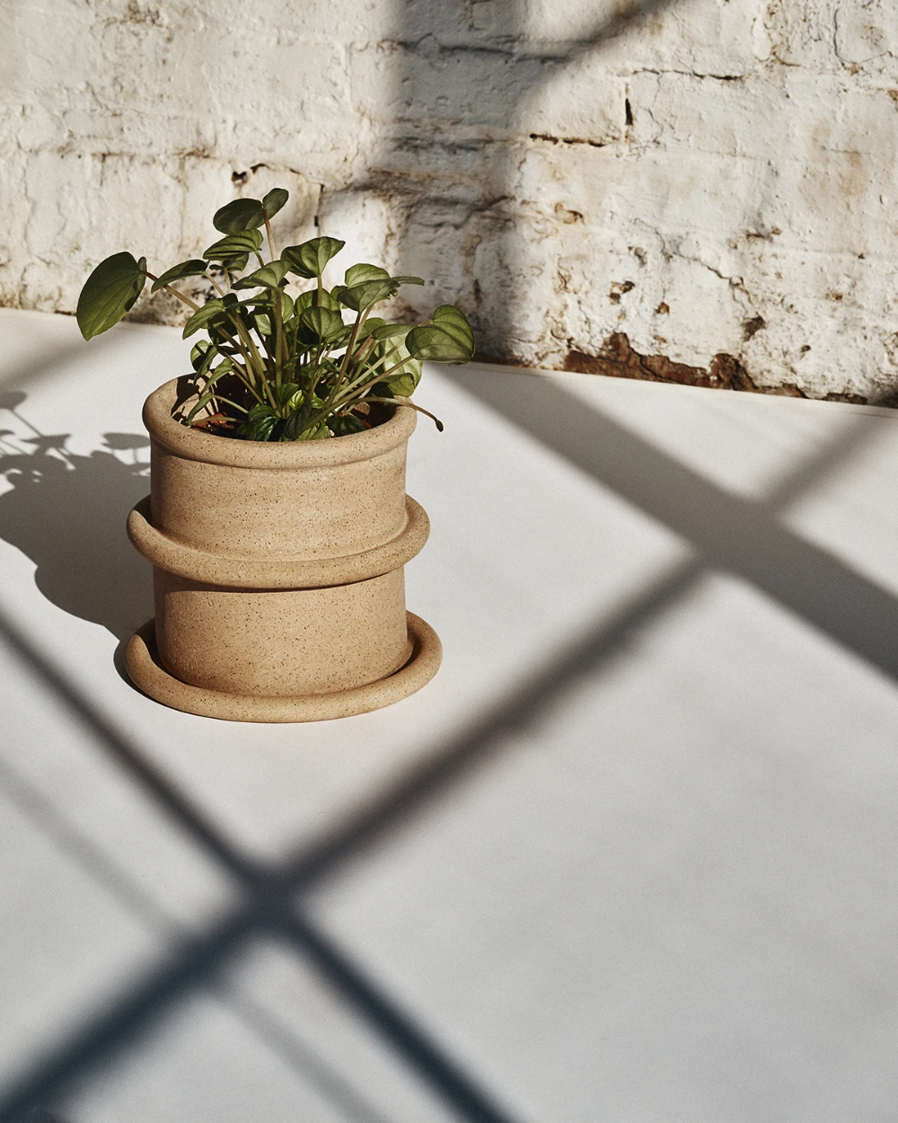Chunky Coil Planter, Speckled: SIN ceramics - Handmade in Brooklyn – SIN | Home goods