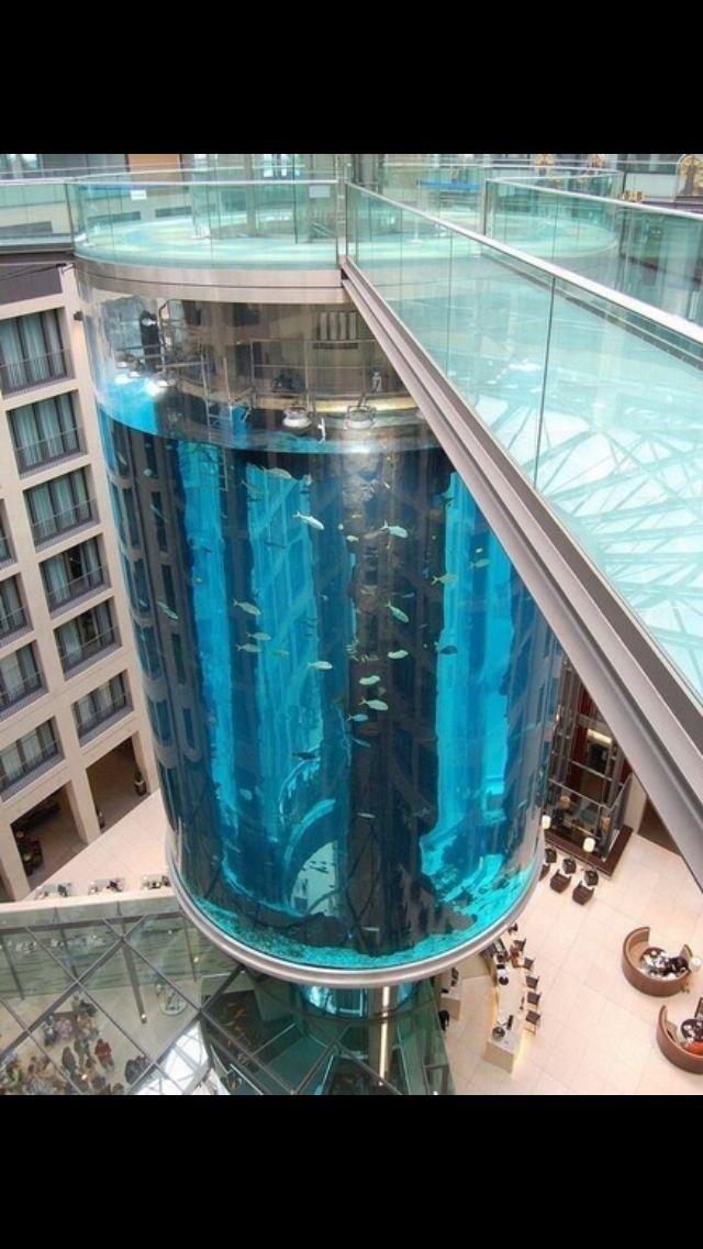 cool fish tank aquarium pinterest schwimmb der fische und freizeit. Black Bedroom Furniture Sets. Home Design Ideas