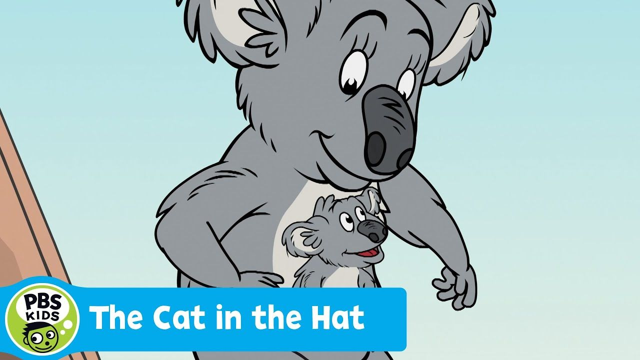 The Cat In The Hat Knows A Lot About That Koala Pouches Pbs Kids Pbs Kids Koala Science Explorer