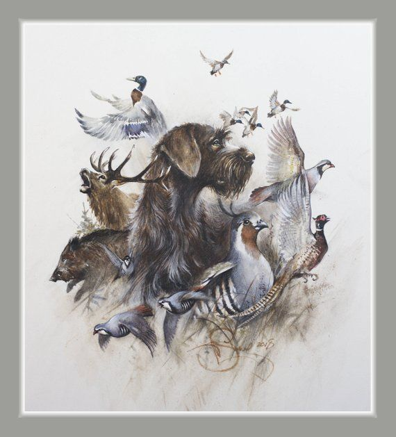 """Photo of Watercolour print """"Hunting with German Wirehaired Pointer"""", …"""