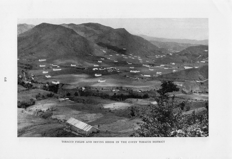 Puerto Rico En La Portada Y Bien Destacada En La Edicion