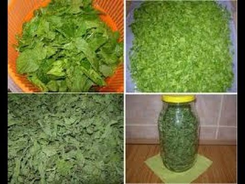 طريقة تجفيف النعناع Vegetables Traditional Lettuce
