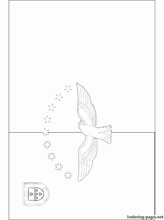 Peruvian Flag Coloring Page In 2020 Coloring Pages Best Flags