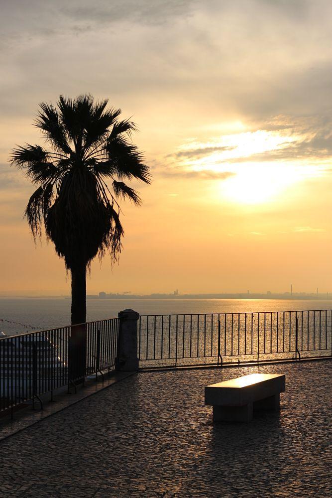 Golden River, Lisbon by carlosmromasantos