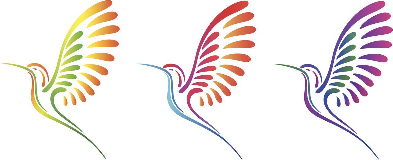 colibríes par pintar - Buscar con Google | bordados | Pinterest ...
