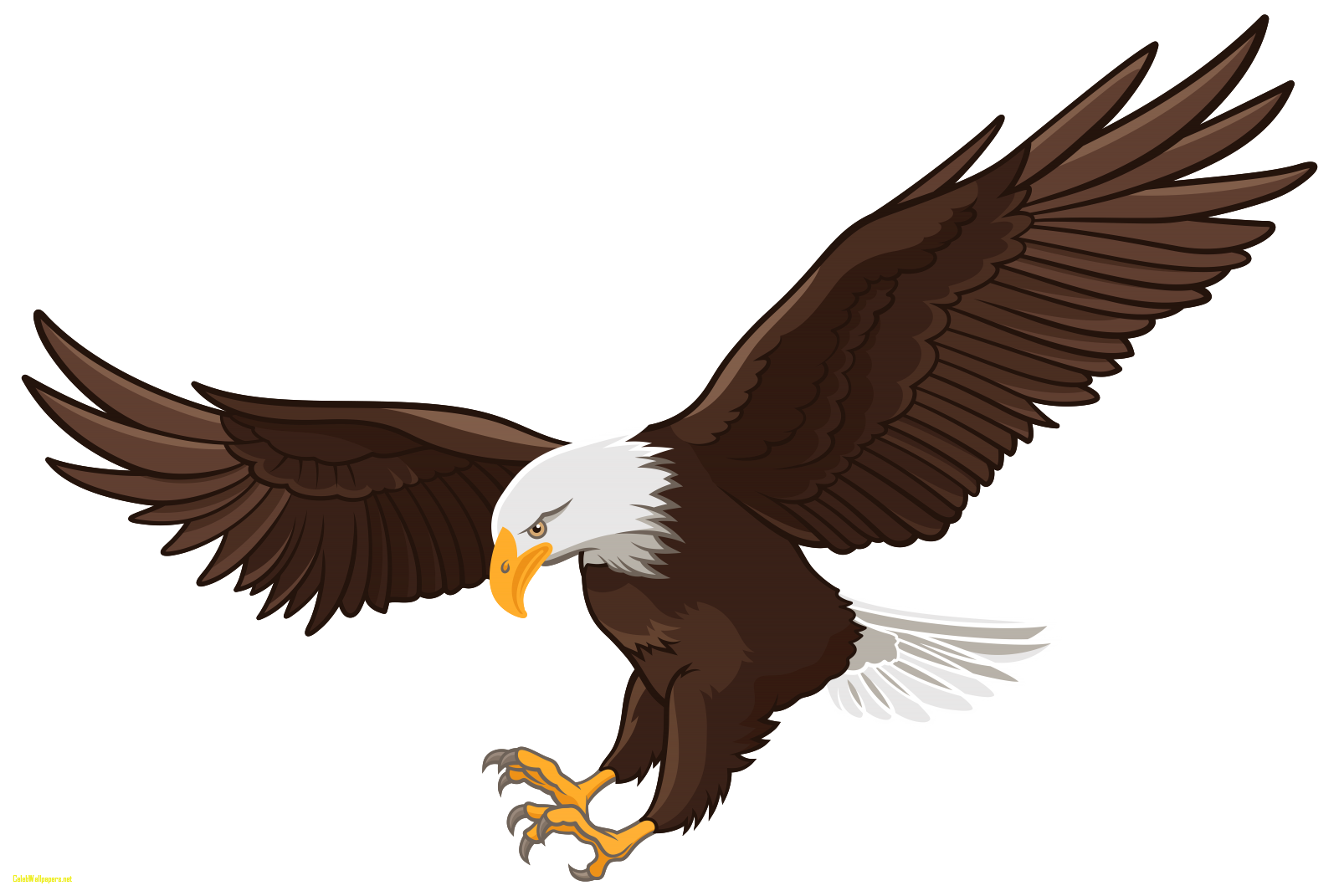 Eagles Clipart File 306 Burung Rajawali Gambar Burung Gambar