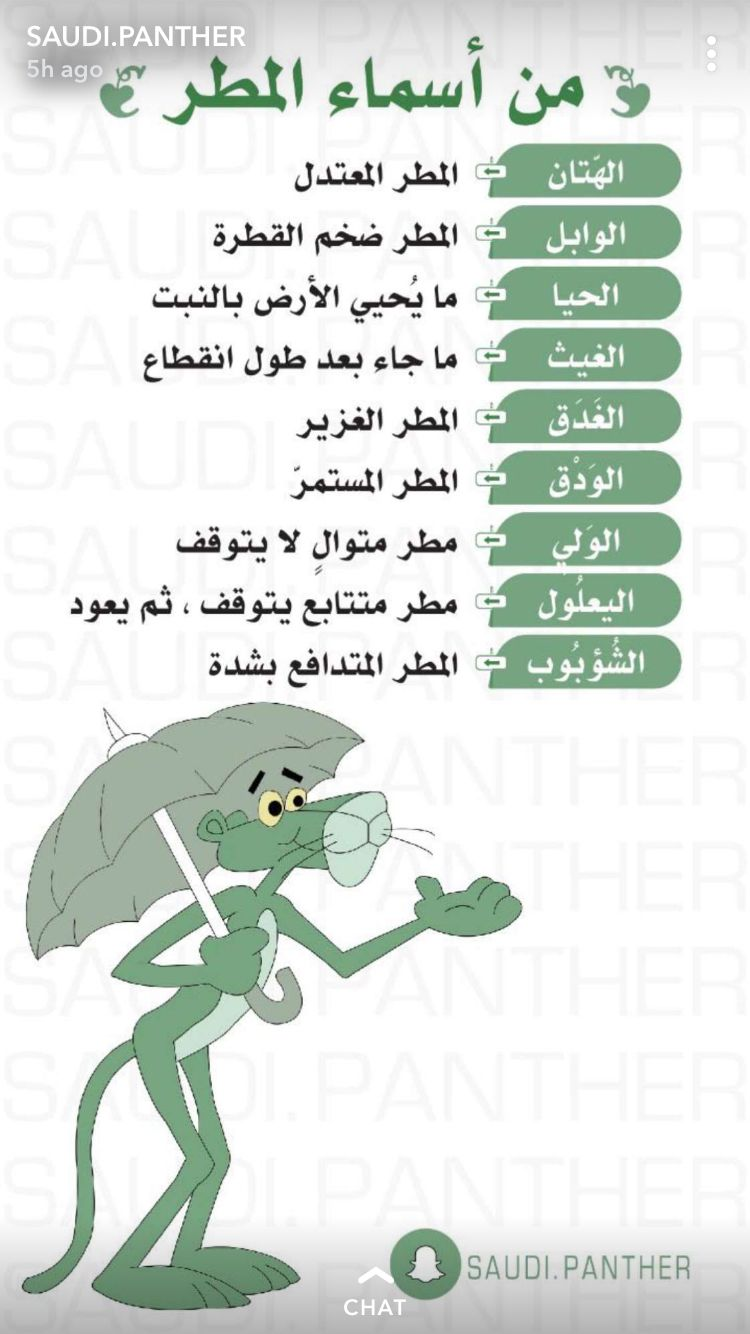 Informations Islamic Phrases Beautiful Arabic Words Funny Arabic Quotes