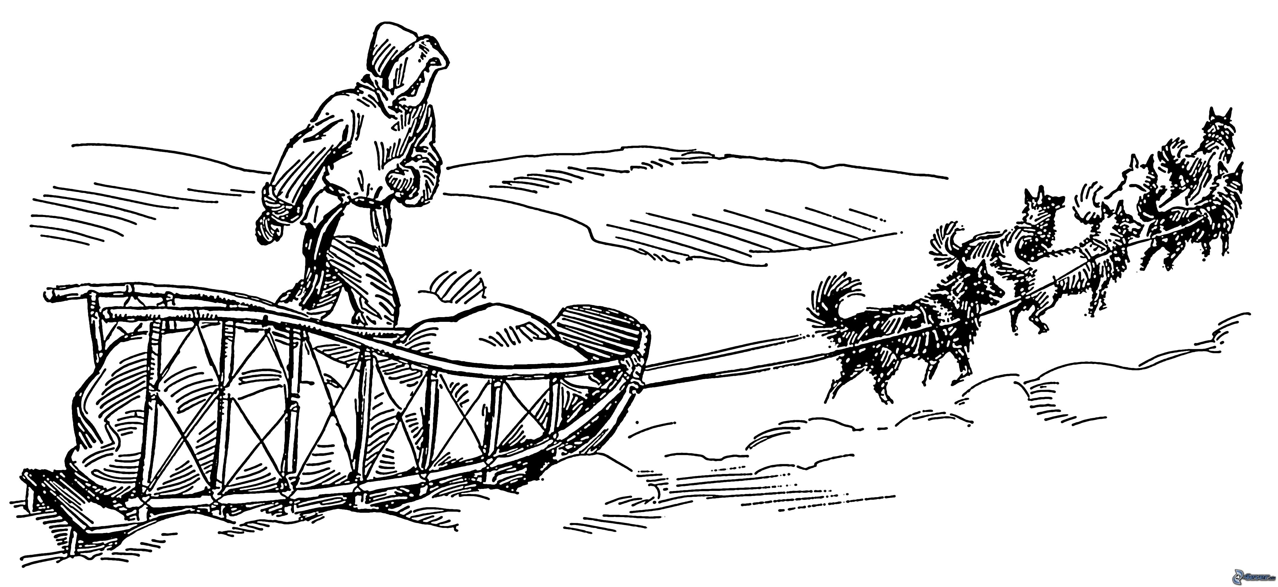 Dog Sled Team Coloring Pages - Atkinson Flowers