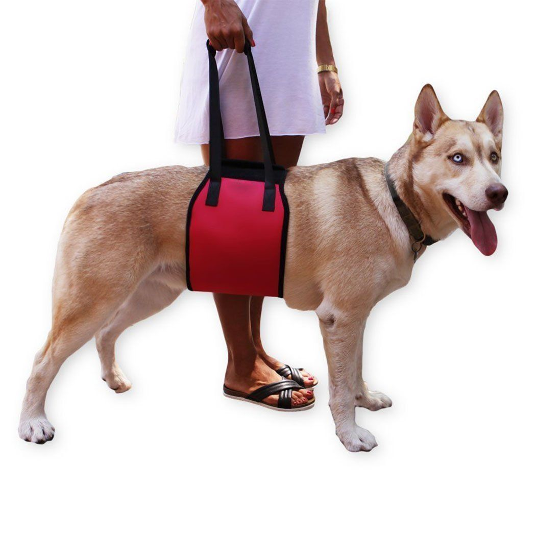 Taumin Large Dog Leashes Dog Lift Harness For Dogs Helping Hand