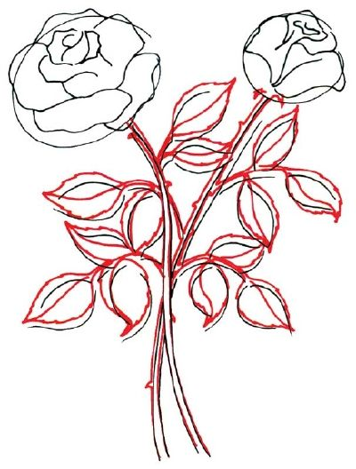 3 Leaves And Stems How To Draw A Rose In 5 Steps Howstuffworks Flower Drawing Tutorials Flower Drawing Roses Drawing