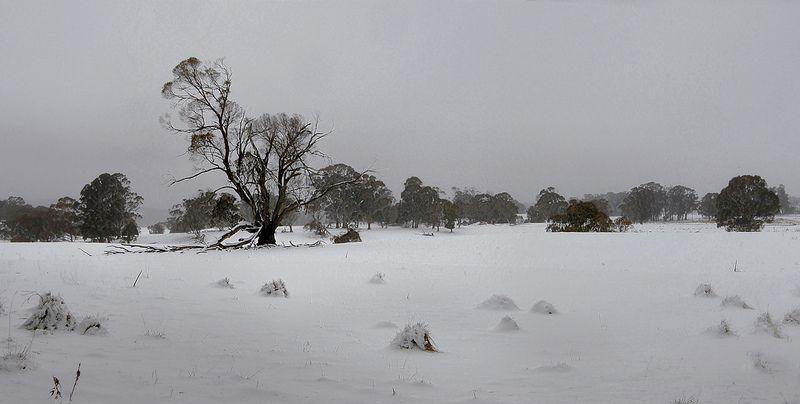 DULL SKIES OF WINTER Sky, Winter, Outdoor