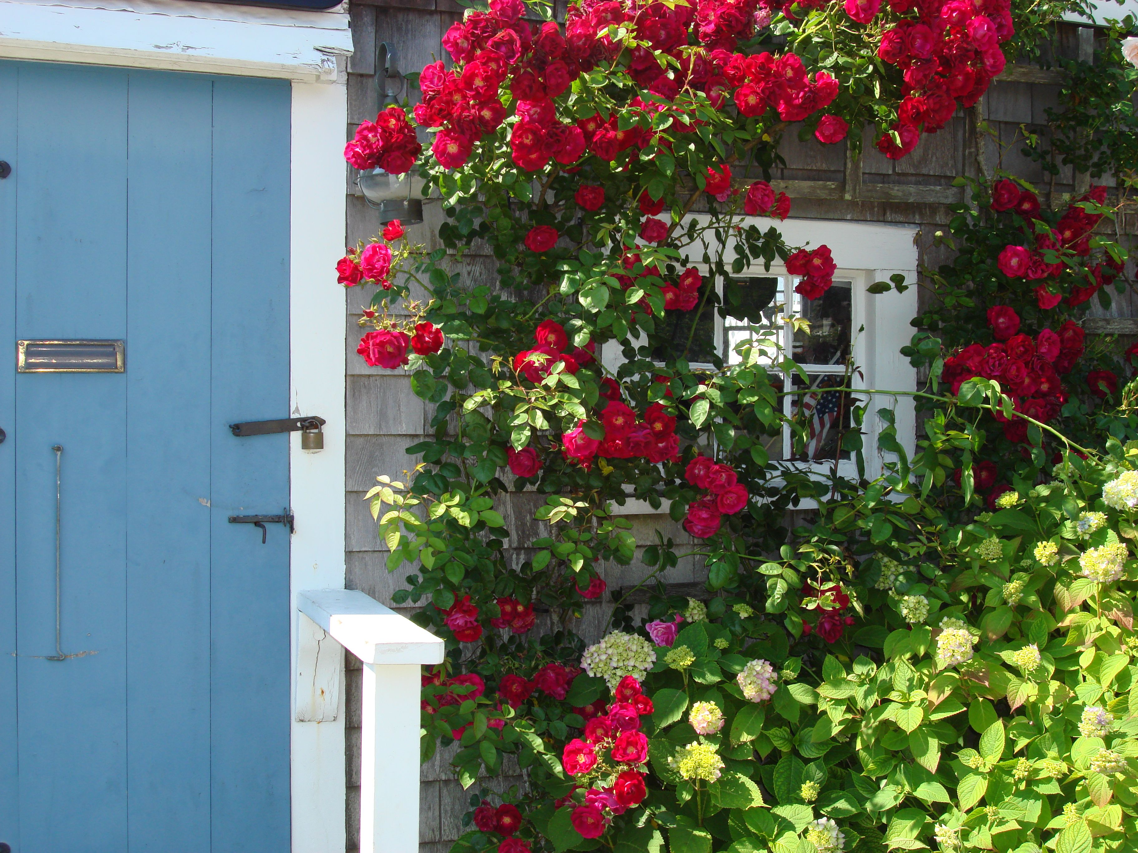 and pinterest beach windows cottage cottages doors nantucket pin