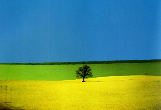 Best Landscape Pictures ( All photographs © by Franco Fontana )