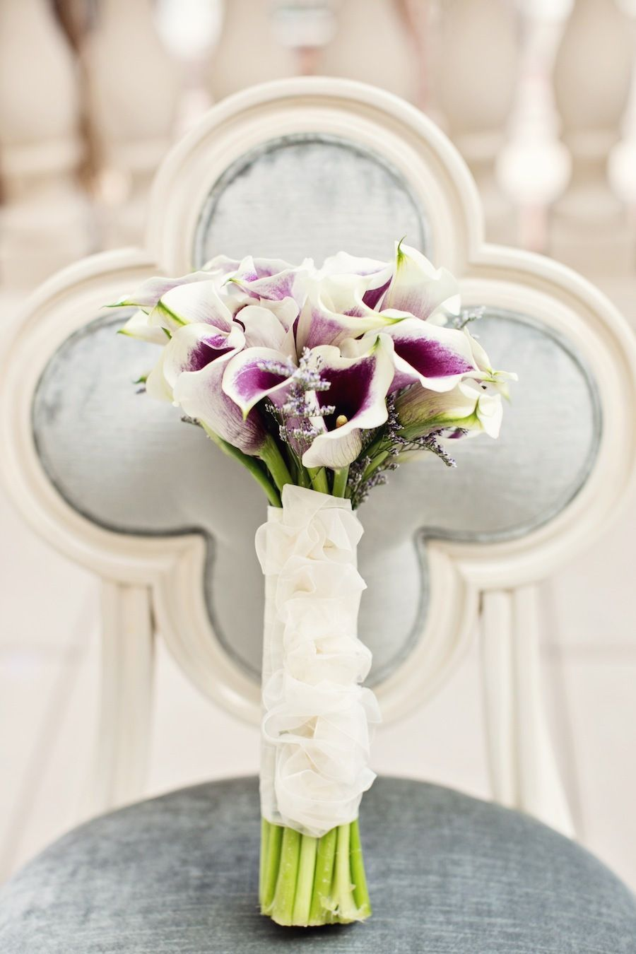San Antonio Wedding At Eilan Hotel And Spa From Mint Photography
