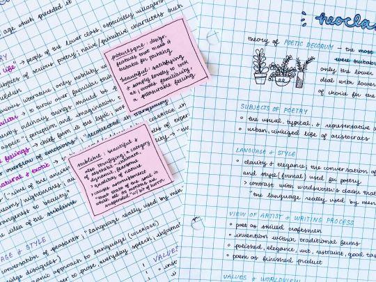 studyrose: close-up of my english notes!