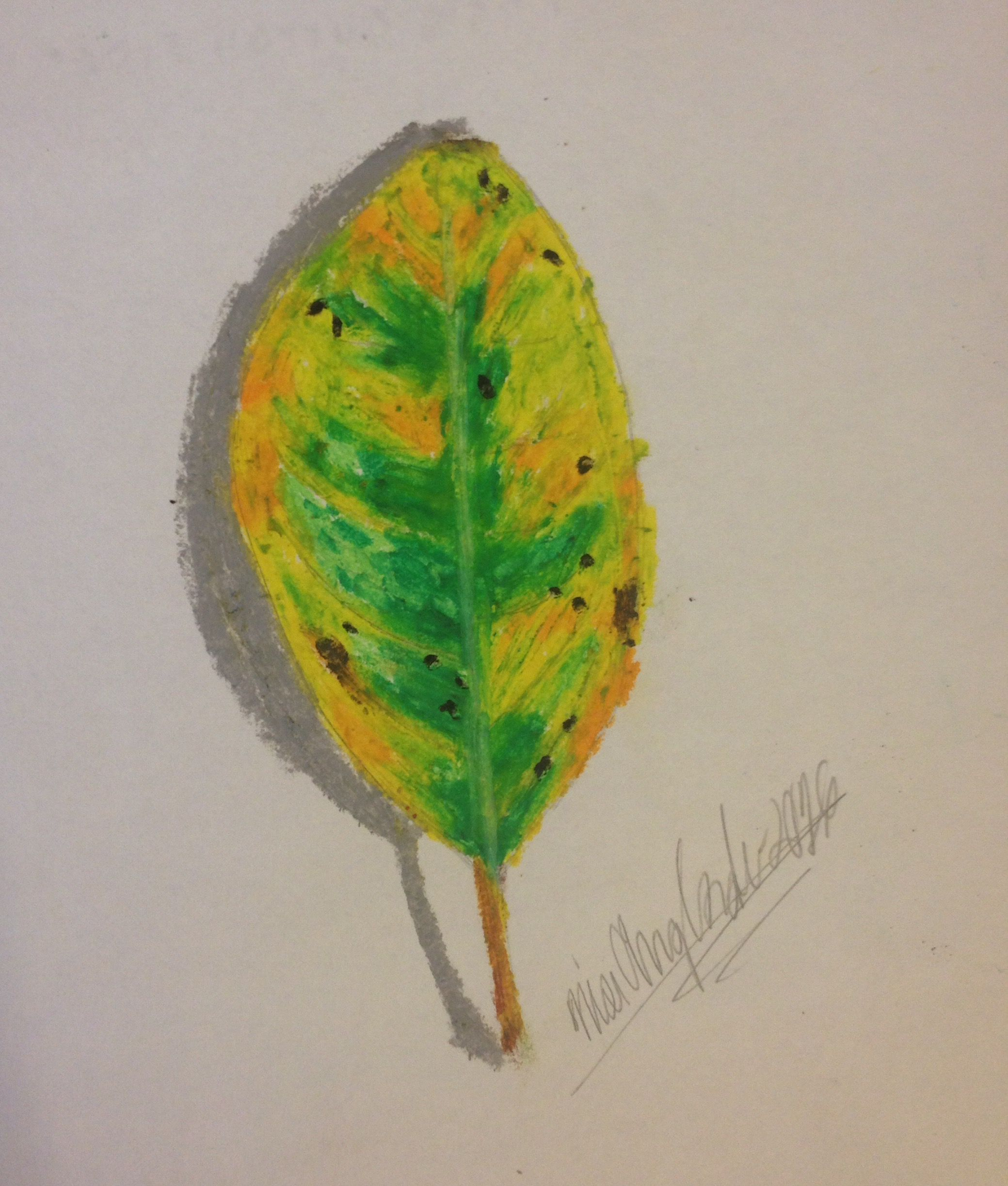 Last Month Drawing Of An Autumn Leaf In Realistic Form Fall Art
