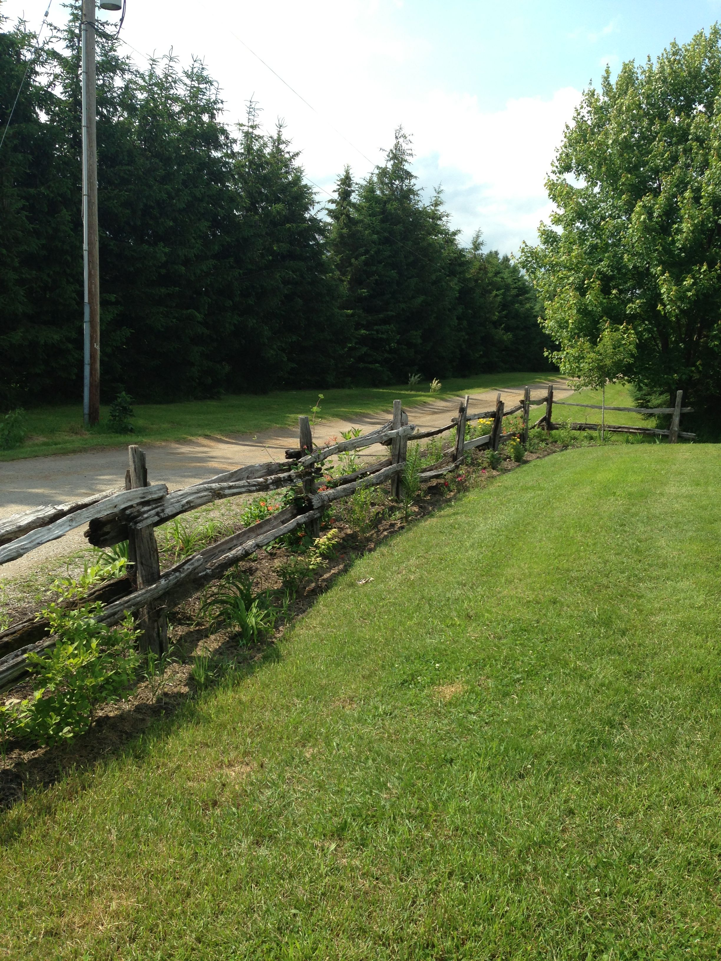 Cedar Rail Fencing Rail Fence Backyard Landscaping