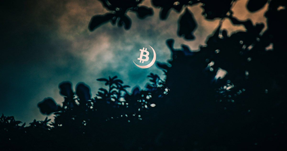 Data reveals how 2020's Bitcoin halving has a… blockchain