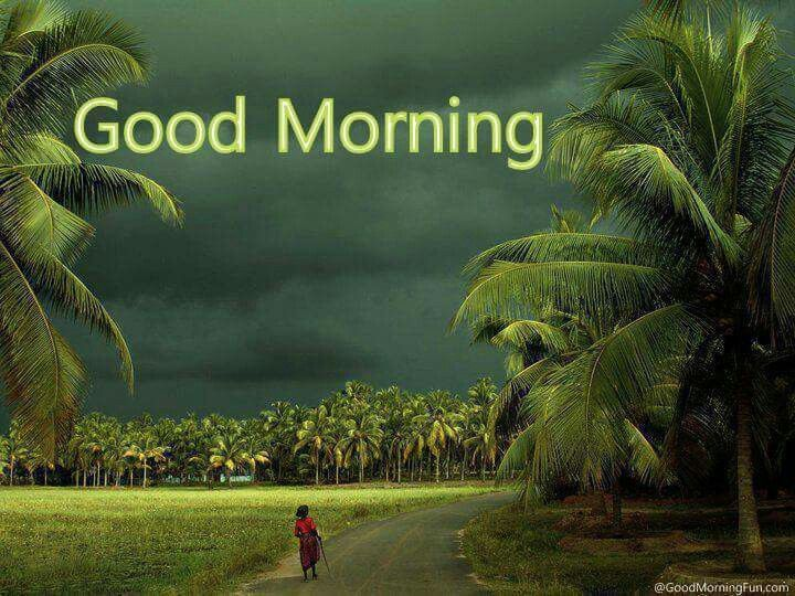 Good morning | Good morning | Kerala india, India, Kerala