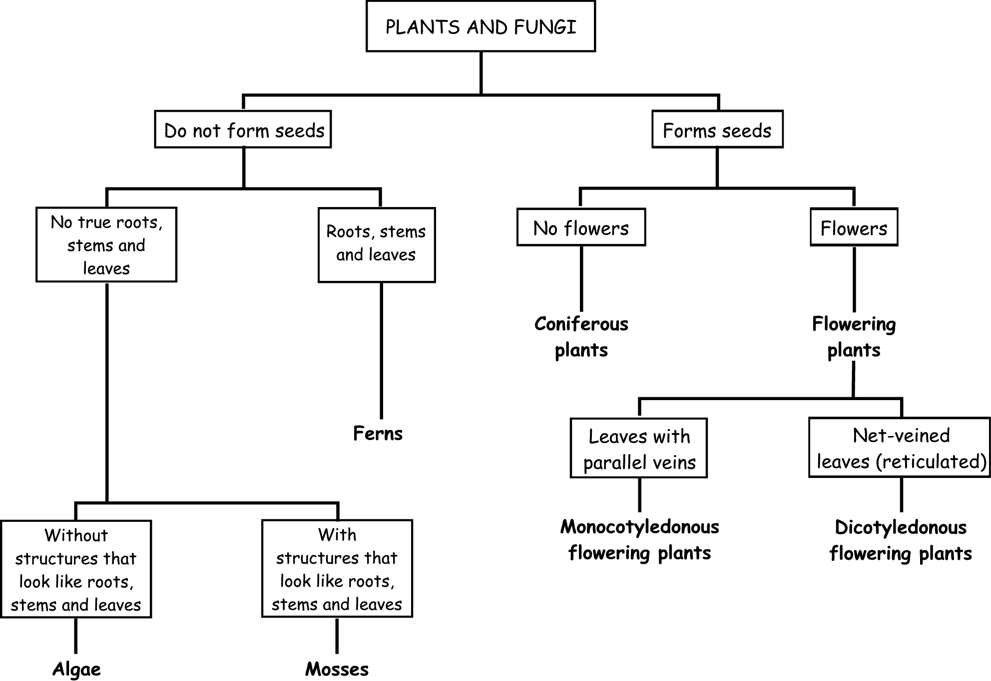 plant classification worksheet worksheets tutsstar thousands of printable activities. Black Bedroom Furniture Sets. Home Design Ideas