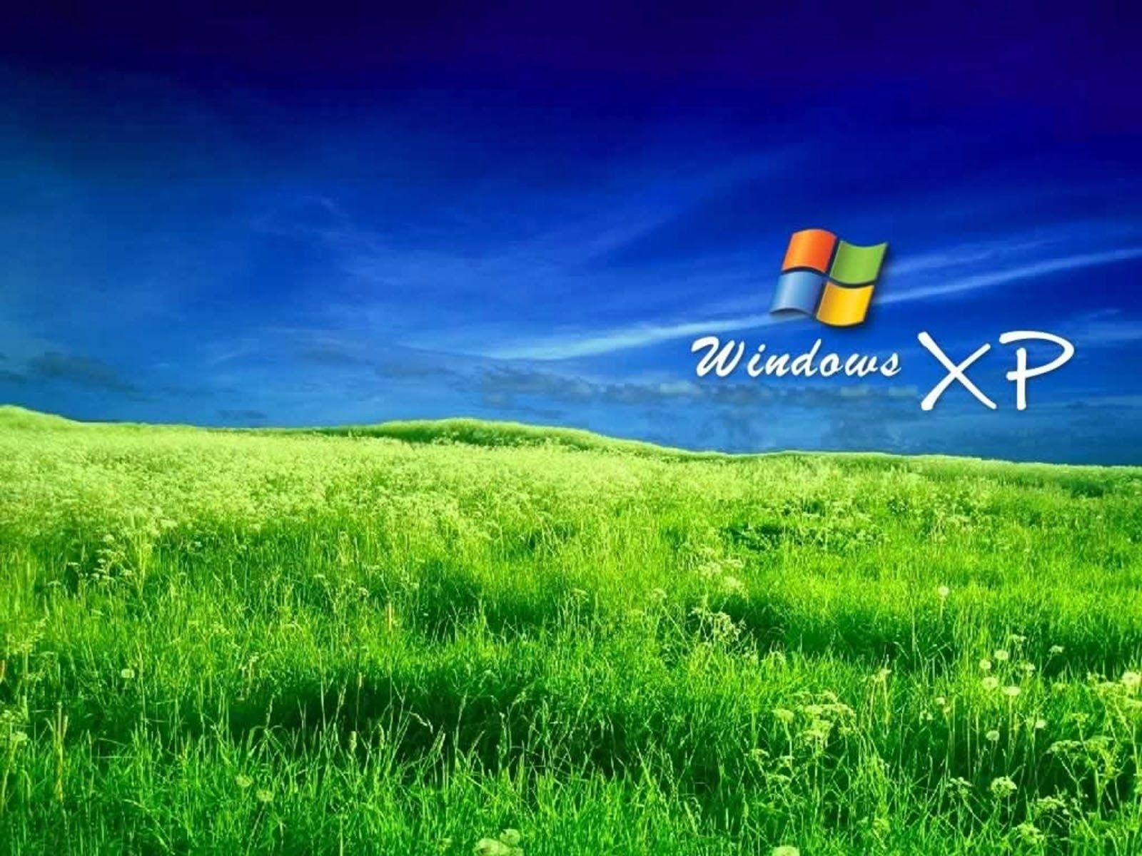 Free Windows XP Wallpapers Wallpaper