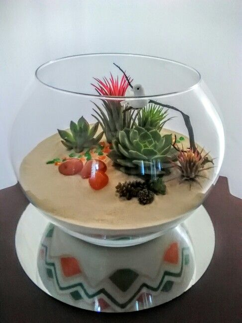 Beautiful Indoor Garden Terrarium with blooming Tillandsias and Sweet Succulents. Balancing the design are three empowering Carnelian Stones. The Sand Art is woven with Orange, Green and Gold Sand in a base of Creamy Creme Sand.