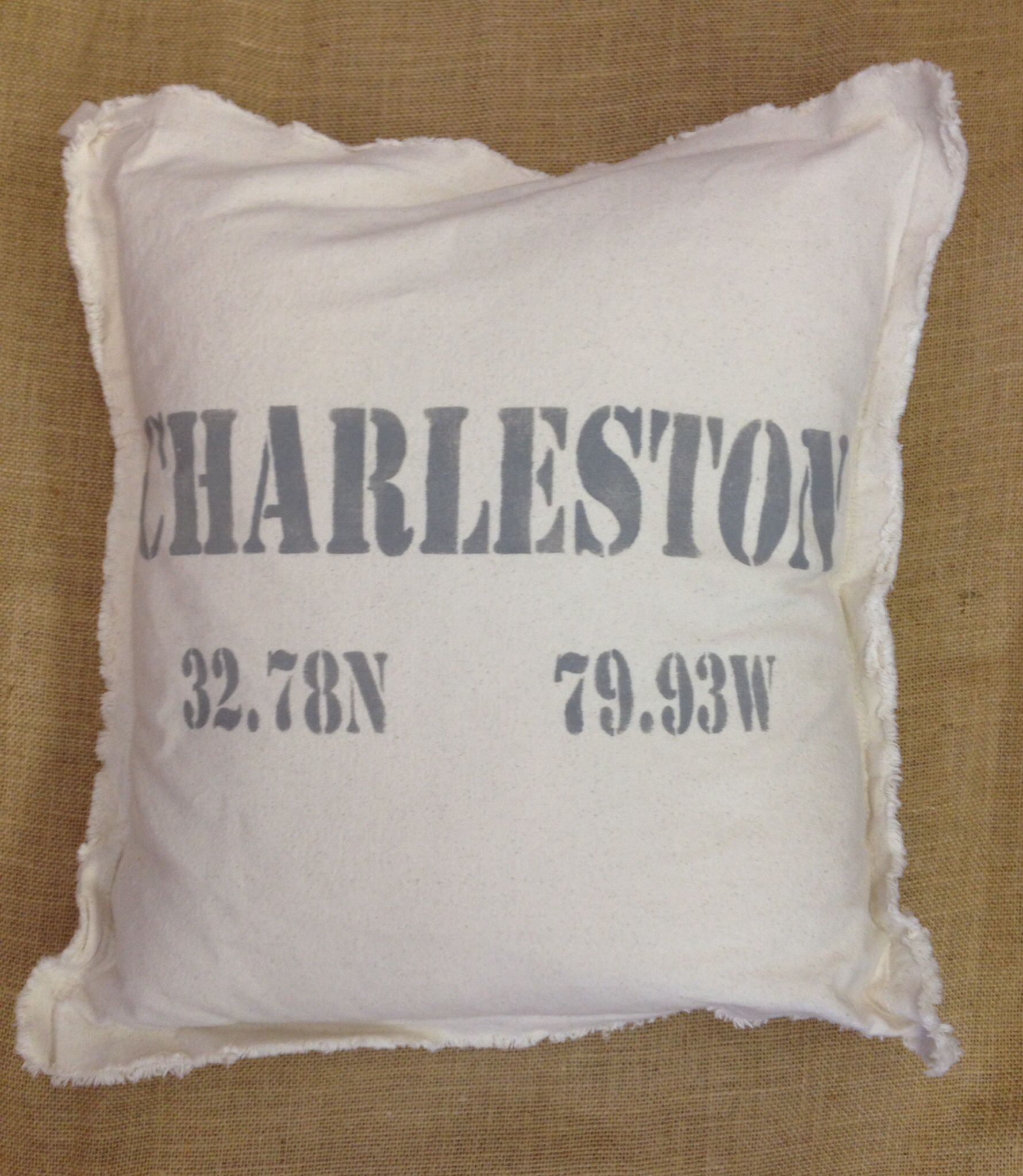 Charleston latitude and longitude pillow with down insert pillows