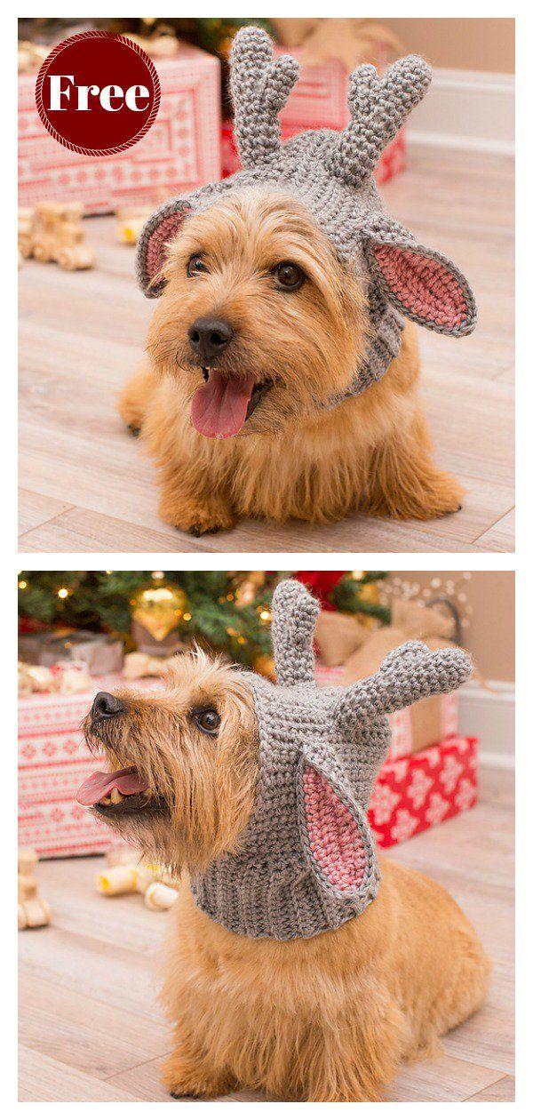 Doggie Deer Snood Free Crochet Pattern Crochet Animaux Et Chien