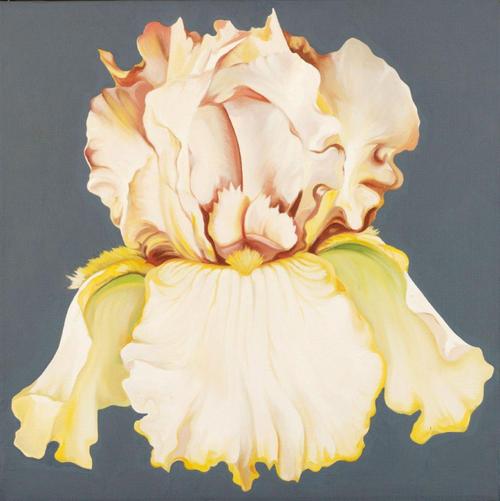 Lowell Nesbitt (American, 1933-1993), Iris on Grey, 1969. Oil on canvas, 61.5 x 61.5cm.
